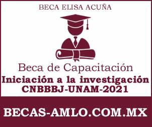 """Beca de capacitación """"Programa de iniciación a la investigación CNBBBJ-UNAM 2021"""""""
