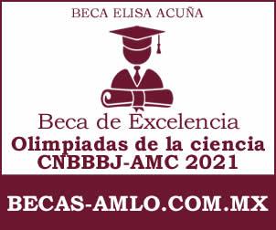 """Beca de Excelencia """"Olimpiadas de la ciencia CNBBBJ-AMC 2021"""""""