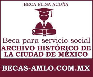 Beca para Servicio Social AHCM
