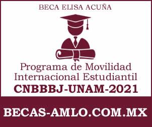 Programa de Movilidad Internacional