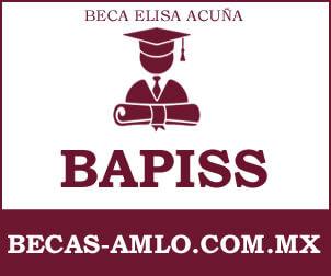 Beca BAPISS