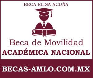 Beca de Movilidad académica nacional