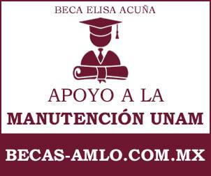 Beca Elisa Acuña De Apoyo A La Manutencion UNAM