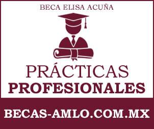 Beca Elisa Acuña Para Practicas Profesionales