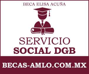 Beca Elisa Acuña Para Servicio Social DGB