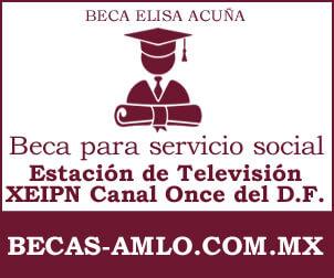 Beca para Servicio Social Estación de Televisión XEIPN Canal Once del Distrito Federal