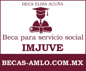 Beca para servicio social IMJUVE